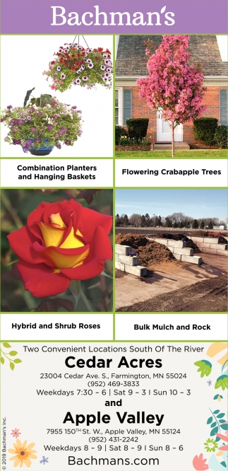 Combination Planters & Haging Baskets