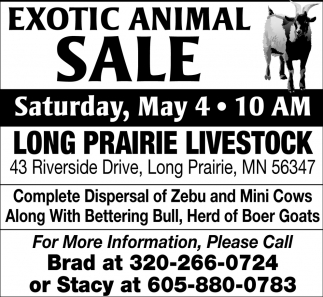 Exotic Animal Sale