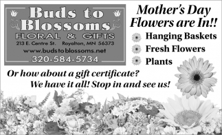 Mother's Day Flowers are In!