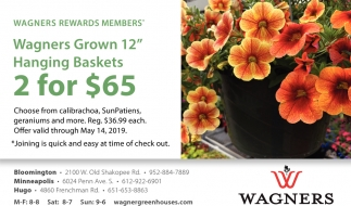 Wagners Grown 12