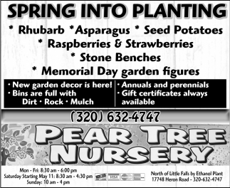 Spring Into Planting