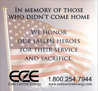 In Memory of Those Who Didn't Come Home
