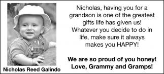Nicholas Reed Galindo