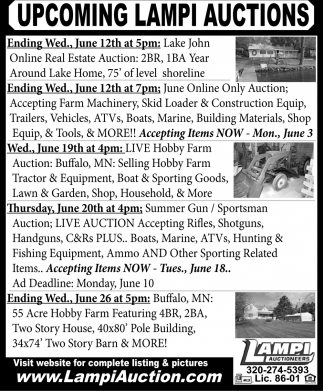 Upcoming Lampi Auction