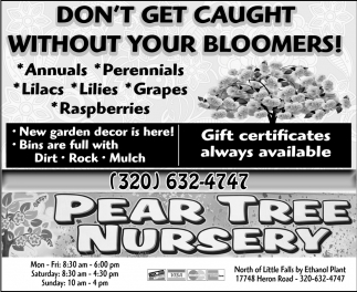 Don't Get Caught Without Your Bloomers!