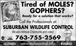 Tired of Moles? Gophers?