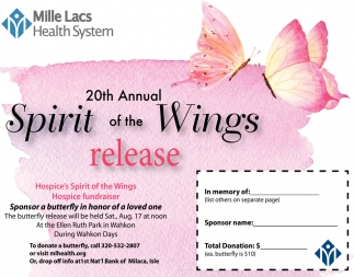 20th Annual Spirit of the Wings Release
