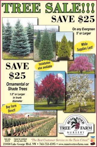 Tree Sale!