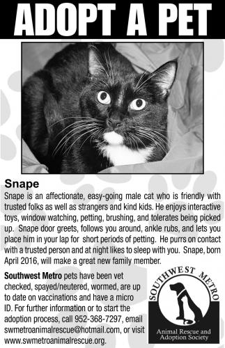 Adop a Pet