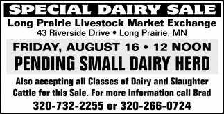 Special Dairy Sale