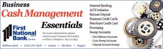 Business Cash Management Essentials