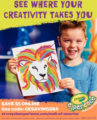 See Where your Creativity Takes You