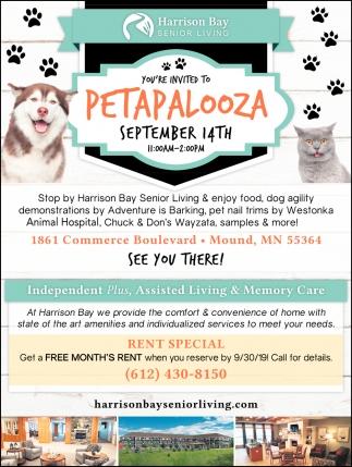 You're Invited to Petapalooza