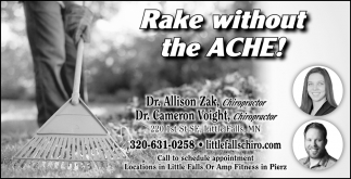 Rake Without the Ache!