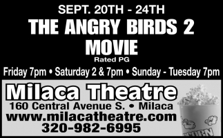The Angry Birds 2 Movie