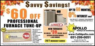 Savvy Savings!