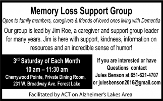 Memory Loss Support Group