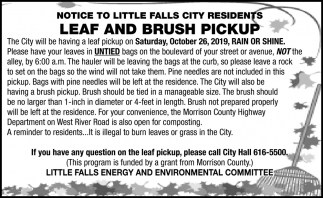 Leaf & Brush Pickup