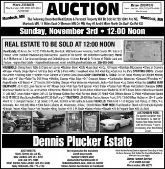 Auction Sunday, November 3rd