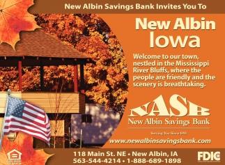 New Albin Iowa