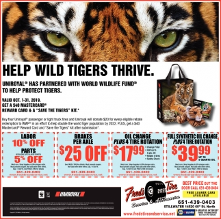 Help Wild Tigers Thrive
