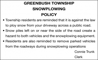 Snowplowing Policy