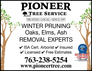Winter Pruning Oaks, Elms, Ash Removal Experts