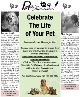 Celebrate the Life of Your Pet