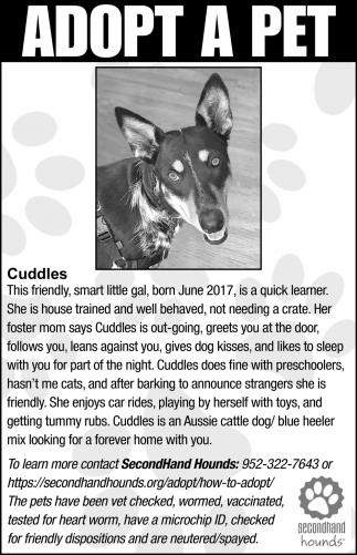 Cuddles