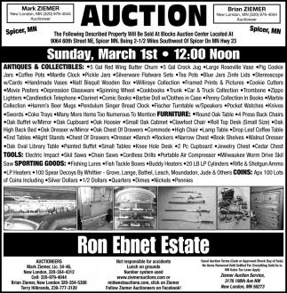Auction Sunday, March 1st