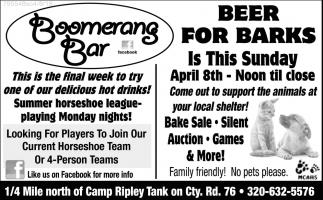 Beer for Barks
