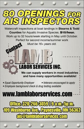 open interviews on site hiring lamb labor services paynesville mn