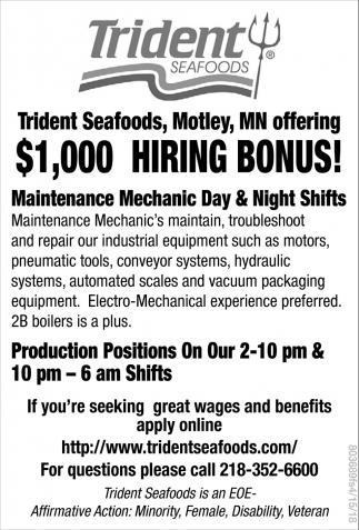 Maintenance Mechanic Day & Night Shifts