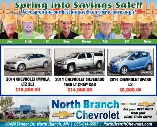 Sring into Savings Sale!