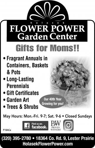 Gardne Center Holasek Flower Power Garden Center Lester Prairie Mn