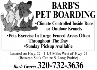Pets Execise in Largue Fenced Areas Often Throughout the Day