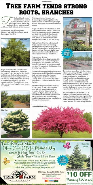 Tree Farm Tends Strong Roots, Branches