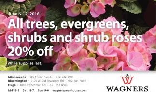All Trees, Evergreens, Shrubs and Shrub Roses 20% OFF