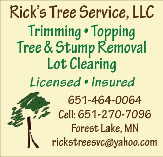 Tree And Stump Removal Lot Clearing