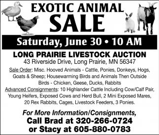 Exotic Animal Sale