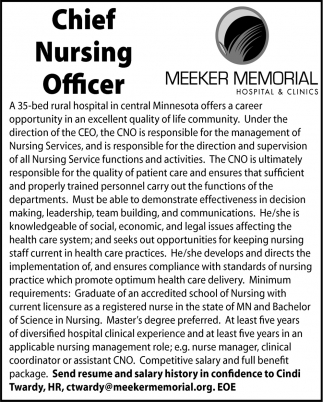 Chief Nursing Officer