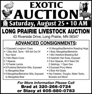 Exotic Auction