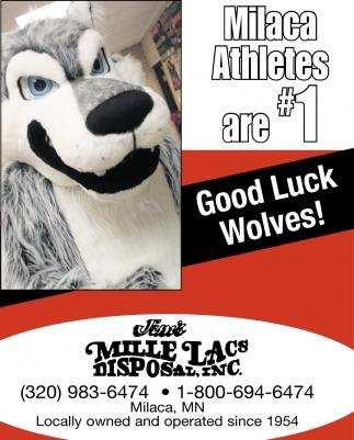 Good Luck Wolves!
