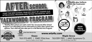 Taekwondo Program