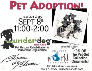 Pet Adoption!