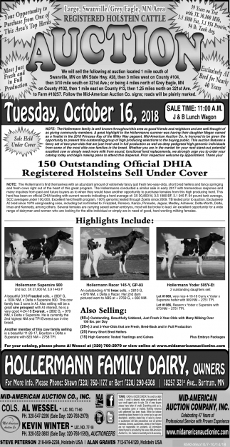 Registered Holstein Cattle Auction
