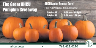 The Great AHCU Pumpkin Giveaway