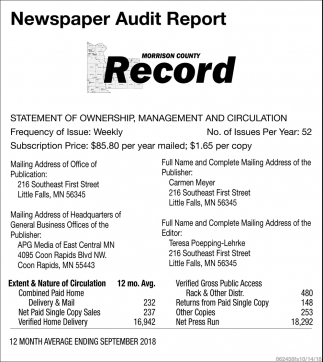 Newspaper Audit Report