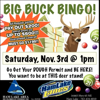 Big Buck Bingo!