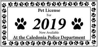 Pet License for 2019 Now Available